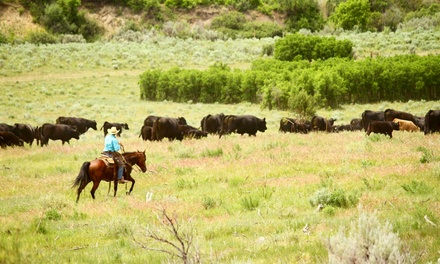 The High Lonesome Ranch In De Beque Co Livingsocial Escapes