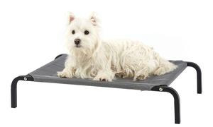 Pets Deals Amp Coupons Groupon