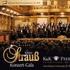 Wiener Johann-Strauß-Konzert-Gala