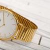 Men's August Steiner Classic Quartz Movement Expansion Bracelet Watch