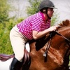 Up to 54% Off Horseback Lessons in Frankfort