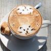 Up to 50% Off at Orlando Cat Café