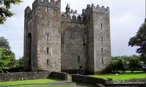 Bunratty Castle and Folk Park: Entry to Bunratty Castle and Folk Park for a Child or a Adult (Up to 41% Off)