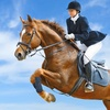 Up to 46% Off Private Riding Lesson at Aberdean Riding Academy
