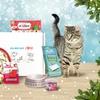 Box de Noël pour chiens et chats