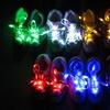 LED-Schnürsenkel