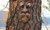 Old Man's Face Garden Decoration