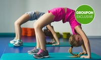 Dance & Acrobatic Packages: Intro ($19) or Rhythm ($59) at Flow Academy Of Motion, Two Locations (Up to $117 Value)