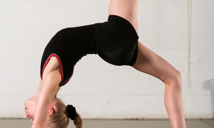 Team Attraction Gymnastics - Apex: $99 for a One-Week Kids' Summer Camp at Team Attraction Gymnastics ($200 Value)