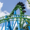 Up to 50% Off Ticket / Gold Pass to Wild Adventures Theme Park