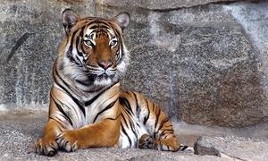 Zoo Dortmund: Eintritt für 2 Personen in den Zoo Dortmund