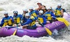 Up to 46% Off White-Water Rafting Trip