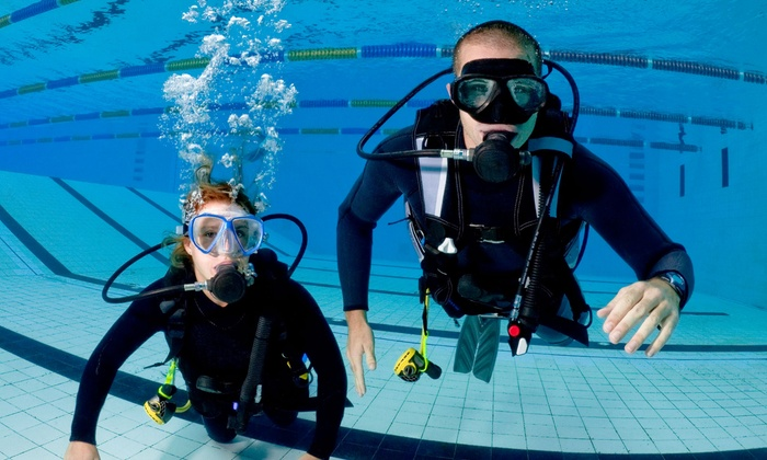 Berry Dive Center - Northbrook/Glenview: PADI Referral, Enriched Air, or Advanced or Full Certification Course Package at Berry Dive Center (Up to 55% Off)