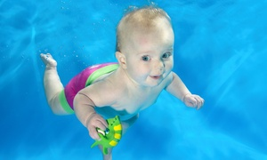 Turtle Tots Dundee and Angus: Babies' and Toddlers' Taster Swimming Lesson at Turtle Tots Dundee and Angus