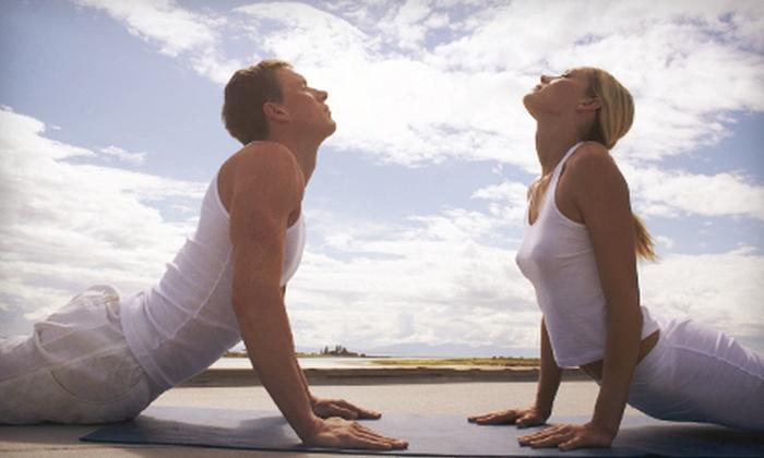 Ananda Yoga Sangam - Douglaston Little Neck: $20 for 20 Yoga Classes at Ananda Yoga Sangam ($338 Value)