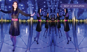 Dolphinarium: Entry to Mirror Maze for Up to Six at Dolphinarium (Up to 41 % Off)
