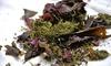 Alghe e medicina naturale - Life Learning: Videolezioni per utilizzare le alghe nella medicina naturale con Life Learning (sconto 83%)