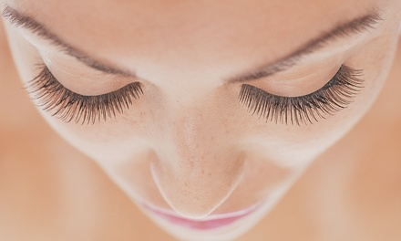 58072c4f887 Kissimmee Eyelash Extensions - Deals in Kissimmee, FL | Groupon