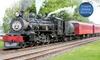 Wine & Lunch Steam Train Tour