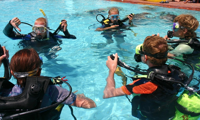should the scuba business dive into the expansion Four ways to refresh your scuba skills, before a dive trip 3 as the expanding air could cause over expansion injuries and attach the business.