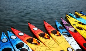 Moss Bay Kayak, Paddle Board & Sail Center: Paddle Board, Single or Double Kayak Rental from Moss Bay Kayak, Paddle Board & Sail Center (50% Off)