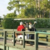 Up to 43% Off 18 Holes of Golf for 2 or 4