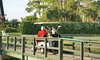 Forest Oaks Golf Club-Golf - Forest Oaks Golf Club-Golf: 18 Holes for Two or Four with Cart and Drinks at Forest Oaks Golf Club (Up to 43% Off)