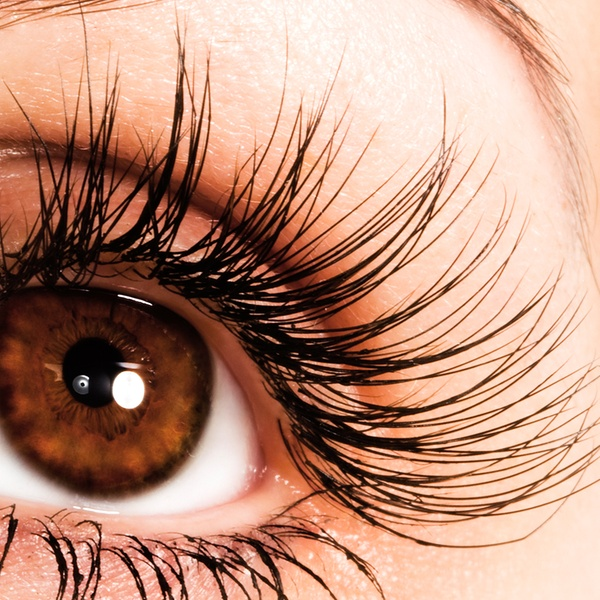 4fe3476d78d Dream lash studio - From $91.50 - Houston, TX | Groupon
