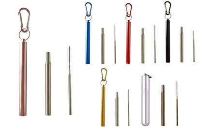 One, Two or Four Collapsible Stainless Steel Straws with Collapsible Cleaning Brushes
