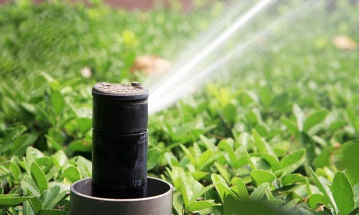 New MIllenium Sprinkler/Yard Care - Boise: $25 for $45 Groupon — New MIllenium Sprinkler/Yard Care