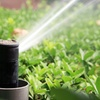 44% Off at New MIllenium Sprinkler/Yard Care