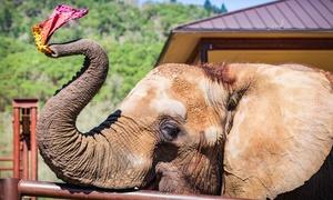 Up to 50% Off Elephants Encounter at Wildlife Safari at Wildlife Safari, plus 6.0% Cash Back from Ebates.