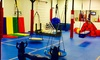 Up to 40% Off Open Play, Private Playdates or Birthday Parties