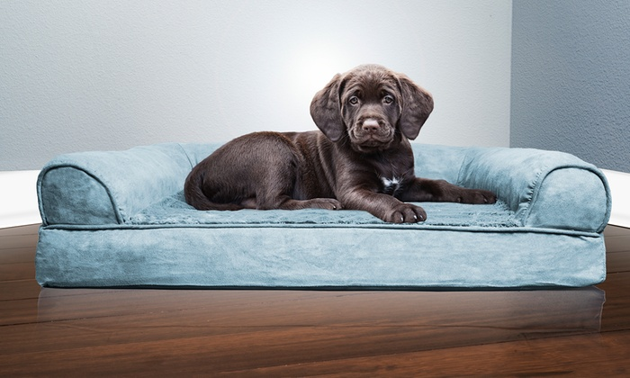 Awe Inspiring Up To 74 Off On Plush Orthopedic Pet Bed Sofa Groupon Goods Short Links Chair Design For Home Short Linksinfo