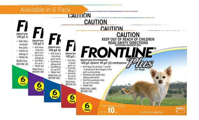 From $56 for Frontline Plus® Flea and Tick Treatment Six-Pack (Don't Pay up to $89.99)