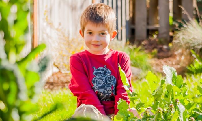 Heather Mills Photography - Eugene: 60-Minute Outdoor Photo Shoot from Heather Mills Photography (70% Off)