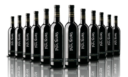 12 Bottles of Pata Negra Cabernet Sauvignon Red Wine for £49.99 With Free Delivery (67% Off)