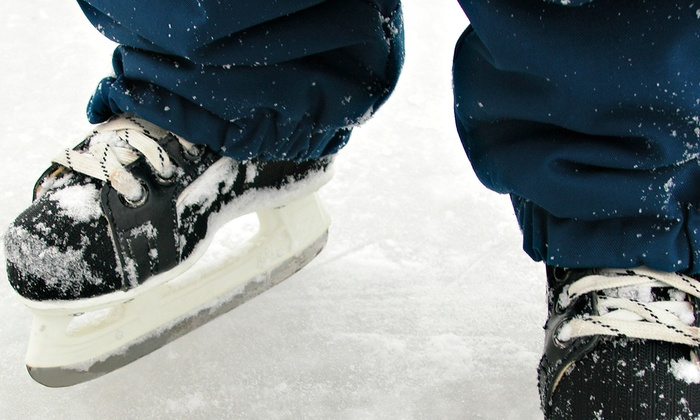 Patterson Ice Center - Grand Rapids: Seven-Week  Learn-to-Skate Program at Patterson Ice Center(50% Off). Two Options Available.