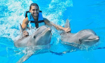 Up to 46% Off Dolphin Experiences at Dolphin Discovery