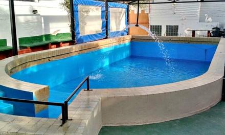 Termas de Río Hondo: desde $849 por 2, 3, 4 o 5 noches para dos + piletas termales + hidromasaje en Hotel Nuevo Hebrón