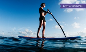 Jetpack America: One- or Two-Hour Paddleboard Rental for One or Two at Jetpack America (Up to 75% Off). Six Options Available.