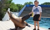 Oceans of Fun - Zoo: $55 for Hands-On Sea Lion Splash Program at Oceans of Fun ($100 Value)