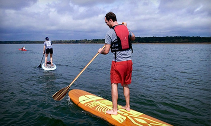 Palmetto Paddle Sports - Bluffton: Two-Hour Guided Kayak Trip or Stand-Up Paddleboard Lesson for Two or Four from Palmetto Paddle Sports (Up to 56% Off)