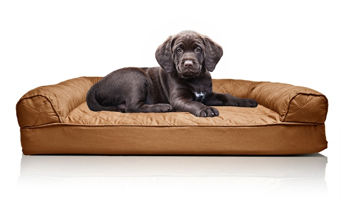 Groupon For Sofa Style Dog Bed