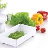 Meglio Multifunction Food Processor, Shredder & Meat Mincer
