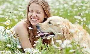 PetMe: 20€ di credito da utilizzare per Dogsitter, Petsitter e tanti altri servizi di PetMe
