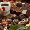 Up to 68% Off Chocolate Experience at Red Elephant Chocolate