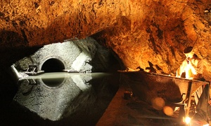 Dudley Canal Trust (Trips) Ltd: Haloween Canal Tour for One, Two, or Four Adults by Dudley Canal Trust, 28–31 October