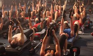 X-Treme Fitness: 10 ou 20 accès all-in à partir 19,99€ au X-Treme Fitness