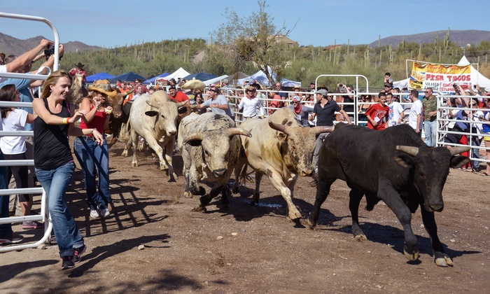 Running with the Bulls - Cave Creek: Two, Four, or Six Spectator Tickets to Running with the Bulls on February 8 or 9 (Up to 51% Off)